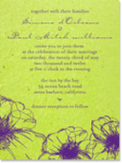 Drawn Poppy Invitation