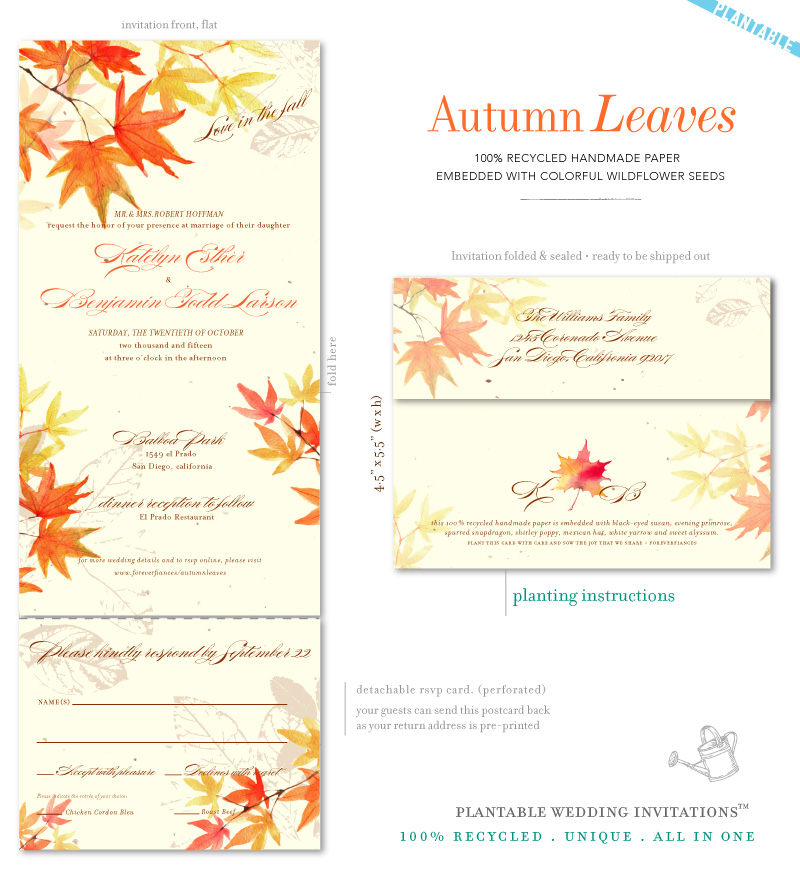 Fall Color Wedding Invitations: Watercolor Wedding Invitations On 100% Recycled Plantable