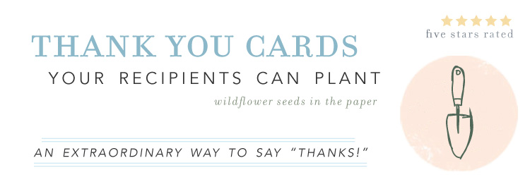 Plantable Thank you notes growing wildflowers