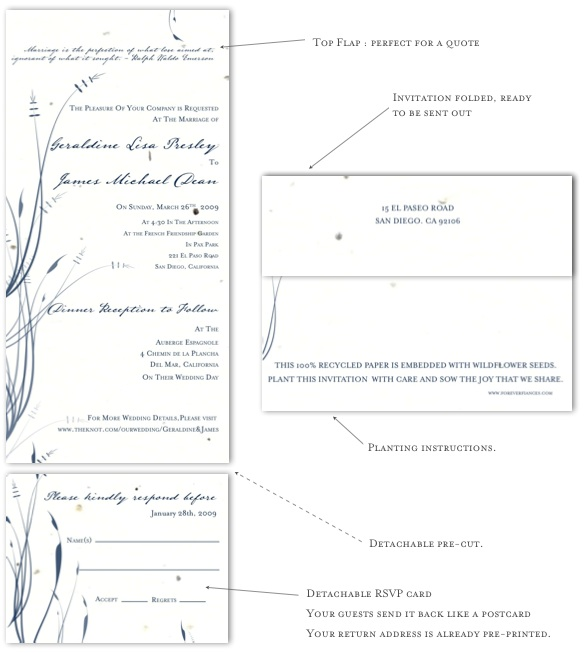Beach wedding invitations plantable