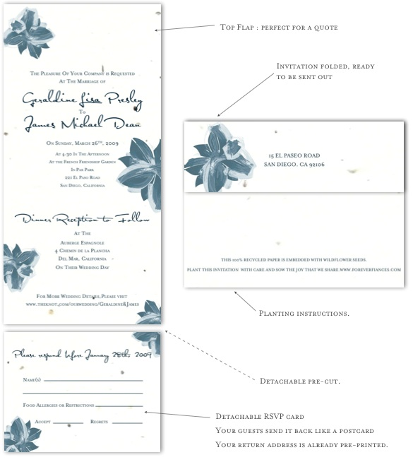 Winter Wedding invitations Poinsettia The Winter Wedding Invitations