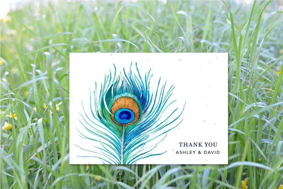 Organic Thank you notes Peacock